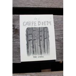 Carpe Diem - Lise L.